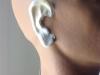 FRW-126 Aged Ears #1