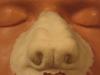frw-013-lg-werewolf-nose