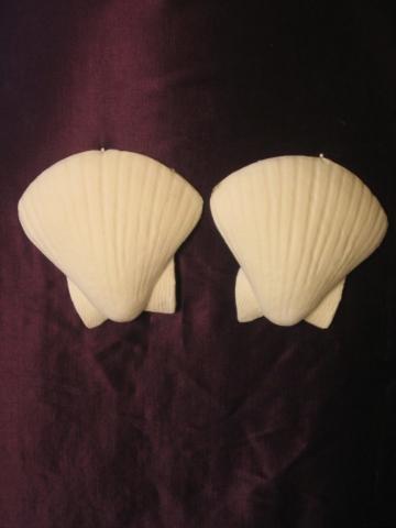 frw-100-sm-shells